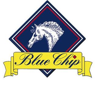 Blue Chip Feed coupons
