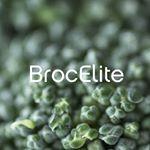 Broc Elite logo