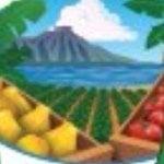 Down to Earth Organic logo