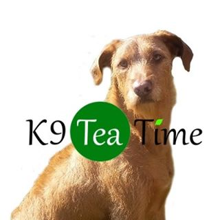 k9 Tea Time coupons