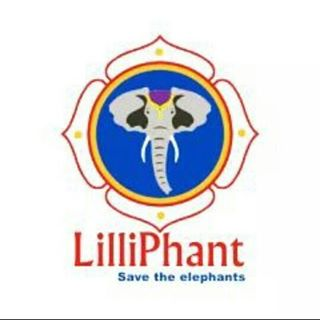 LilliPhant coupons