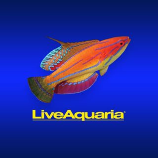 Live Aquaria coupons