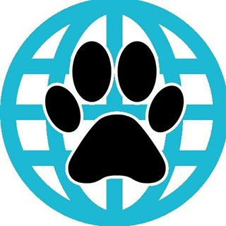 Coupon codes, promos and discounts for pawzaar.com