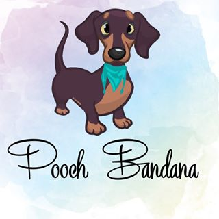 Pooch Bandana coupons