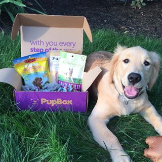 Coupon codes, promos and discounts for pupbox.com
