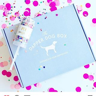 The Dapper Dog Box coupons