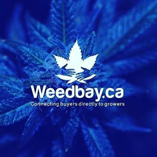 Weed Bay coupons