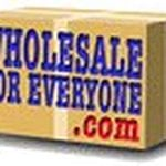 Coupon codes, promos and discounts for wholesaleforeveryone.com
